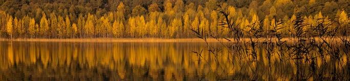 Herbst am Wasserufer Lizenzfreies Stockfoto