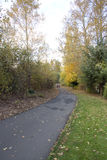 Herbst-Weg auf Spur stockbild