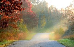 Herbst-Weg-Methode Lizenzfreies Stockfoto