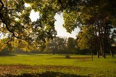 Herbst in Wien Stockbild