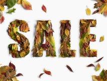 Herbst-/Winter-Verkaufs-Typ Stockfotografie