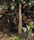 Herbst Woodpile Stockfotografie