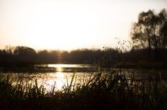 Herbstabend auf dem Dnieper-Fluss Lizenzfreies Stockfoto