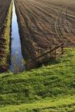 Herbstackerland in den Niederlanden Lizenzfreies Stockbild