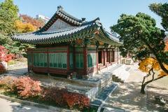 Herbstahorn und koreanische traditionelle Architektur an Deoksugungs-Palast in Seoul, Korea Stockfotografie
