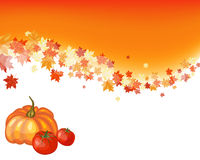 Herbstahornhintergrund Lizenzfreie Stockbilder