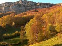 Herbstansicht Stockbild