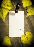 Herbstanzeige Stockfotografie
