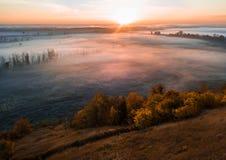 Herbstatmosphäre Bunte Bäume im Vordergrund Kalter Nebel im Tal Die Schönheit der Natur bei Sonnenaufgang lizenzfreies stockbild