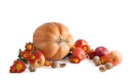 Herbstaufbau Lizenzfreie Stockfotos