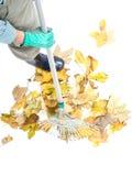 Herbstaufräumen Lizenzfreies Stockfoto