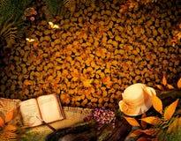 Herbstauslegung - liebes Tagebuch Stockfotos