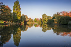 Herbstbäume, die in einem Teich sich reflektieren Lizenzfreies Stockfoto