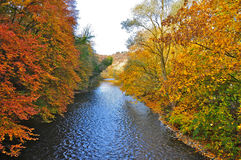 Herbstbäume durch den Fluss lizenzfreie stockfotos