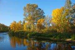 Herbstbäume durch den Fluss Stockbild