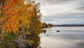 Herbstbäume durch einen See Stockbild