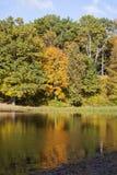 Herbstbäume entlang dem See Stockbild