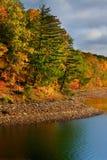 Herbstbäume entlang Seeufer Stockfoto