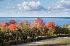 Herbstbäume im Hintergrund der Fluss Volga Lizenzfreie Stockbilder