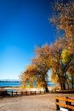 Herbstbäume neben See Stockfoto