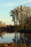 Herbstbäume reflektierten sich im Wasser in einem Park Stockbild