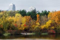Herbstbäume reflektierten sich im Wasser von einem See Lizenzfreies Stockfoto