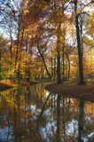 Herbstbach stockfoto