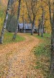 Herbstbahn Stockbild