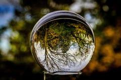 Herbstball Lizenzfreie Stockfotografie