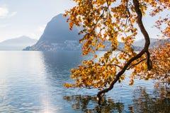 Herbstbaum auf dem Ufer von Lugano See, die Schweiz Stockbild