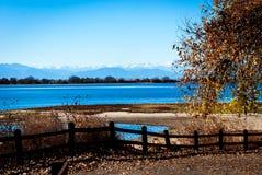 Herbstbaum neben See Stockfoto