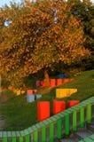 Herbstbaum und Design der Landschaft Lizenzfreie Stockfotos