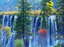 Herbstbaum und -wasserfall im jiuzhaigou Stockbilder