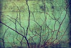 Herbstbaumastschattenbild über blauem Himmel Lizenzfreie Stockfotos