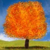 Herbstbaumillustration mit hellen Farben im orange Rot und im Gelb Lizenzfreie Stockfotos