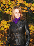Herbstbaumuster Lizenzfreie Stockfotografie