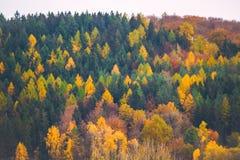 Herbstberge im Bayern, Deutschland Lizenzfreies Stockbild