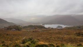 Herbstberglandschaft nach Regen stockbilder