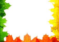 Herbstbeschaffenheit Lizenzfreies Stockfoto