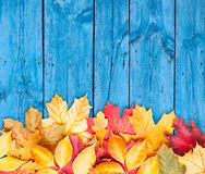 Herbstblätter über hölzernem Hintergrund. Kopieren Sie Platz. Stockbild