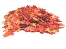 Herbstblätter auf einem Stapel Stockfoto