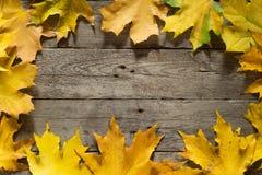 Herbstblätter auf hölzernem Hintergrund Weinlese-Brett Gelbe Farbe Stockfotografie