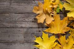 Herbstblätter auf hölzernem Hintergrund Weinlese-Brett Gelbe Farbe Lizenzfreie Stockfotos