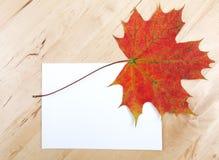 Herbstblätter auf Papierblatt Lizenzfreies Stockbild