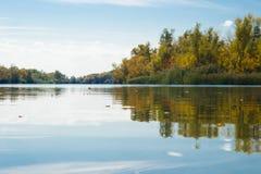 Herbstblätter auf Wasser Lizenzfreie Stockbilder