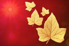 Herbstblätter, die zur Sonne fliegen Stockfotos