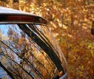 Herbstblätter reflektiert in einem Autofenster Lizenzfreies Stockfoto