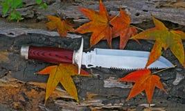 Herbstblätter u. -messer Lizenzfreie Stockfotografie