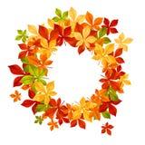 Herbstblathintergrund stock abbildung
