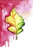 Herbstblatt auf dem roten nassen Hintergrund Stockfotografie